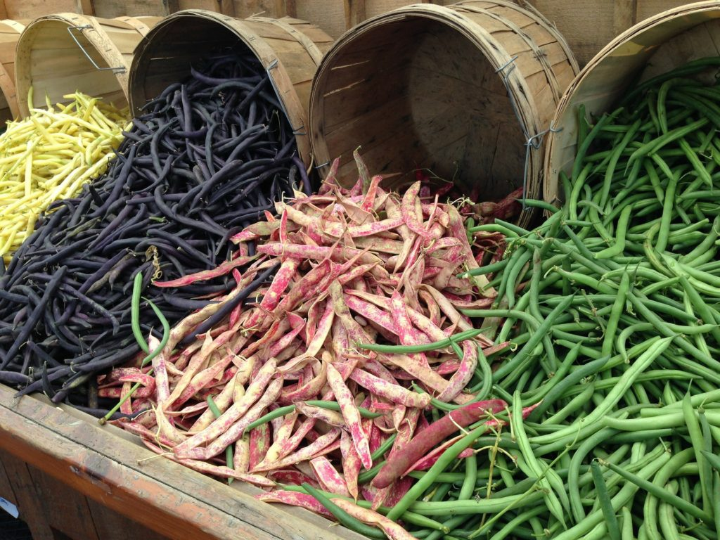 Fresh beans in their pods